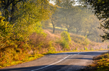 asphalt road in blue shade of trees in mountainous rural area at foggy golden sunrise Stock Photo
