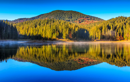 View on crystal clear lake with mist and reflection on the water. Spruce forest on foggy autumn morning. Majestic mountain landscape at sunrise. Stock Photo