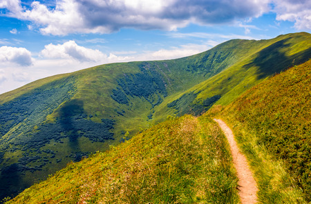 winding road through large meadows on the hillside of Carpathian mountain range