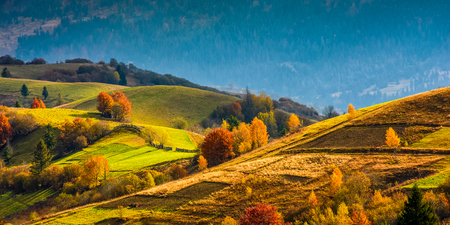agricultural fields with fence on hills. yellow and red foliage on trees in autumn time. beautiful rural landscape at sunrise