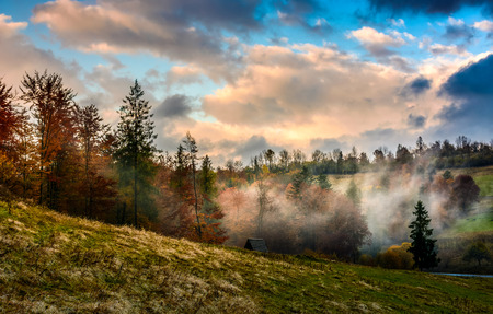 evening fog in forest on a hill. dramatic sky in autumn at sunset Stock Photo