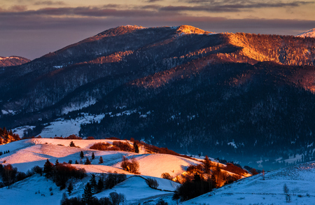beautiful warm winter sunrise on cloudy morning in snow covered fields near rural area of Carpathian mountains