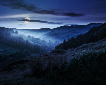 idyllic summer landscape. cold morning fog on hillside in mountainous rural area before sunrise at night in full moon light Stock Photo