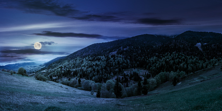 mountain landscape. hillside with trees on green grassy meadow near foggy mountains under overcast sky at night in full moon light