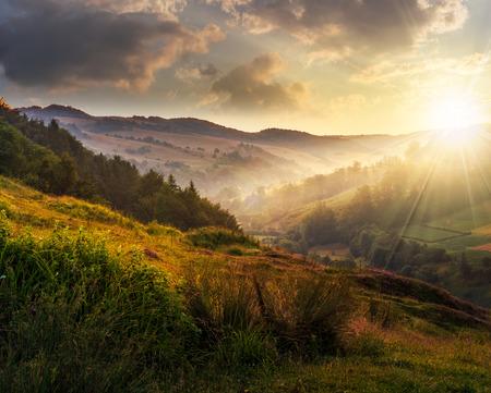 idyllic summer landscape. cold morning fog on hillside in mountainous rural area at sunset Stock Photo