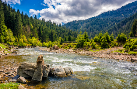 River with rocky shore flows among  green forest at the foot of the mountain. Picturesque nature of rural area in Carpathians. Serene springtime day under blue sky with some clouds Stock Photo - 79546653