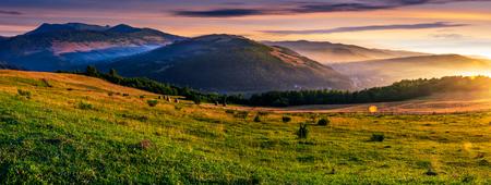 日の出霧山の草で覆われた田園地帯のパノラマ。美しいカルパティア田舎風景 写真素材