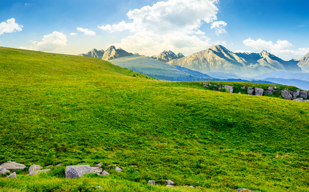Hight Tatra mountain summer landscape. meadow with huge stones among the grass on top of the hillside near the peak of mountain range Stock Photo - 79963952