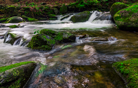 small cascades on the forest stream among huge boulders covered with moss. dreamy Carpathian landscape Stock Photo - 80226549