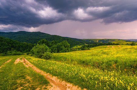 countryside summer landscape in mountains before the storm. country road through grassy rural field near the forest on a hillside under cloudy purple sky Stock Photo