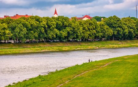longest linden alley in europe. Summer landscape on the river embankment in Uzhgorod, Ukraine. Stock Photo