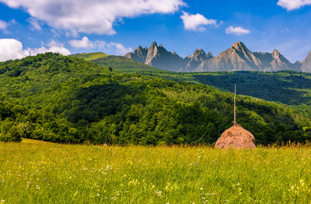 stacks of hay on hayfield near the forest. Beautiful countryside landscape in High Tatra Mountains Stock Photo