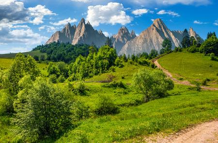 Samengesteld de zomerlandschap. Weg door het bos op grasrijke helling in Hoge Tatras. mooi de zomerweer met blauwe hemel en sommige wolken Stockfoto