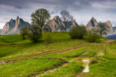 woodshed among trees on a hill by the road.  Composite High Tatras countryside landscape in dramatic weather