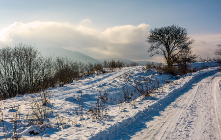 tree by the countryside road in mountains. beautiful winter sunrise landscape  Stock Photo