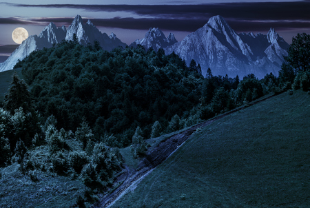 footpath uphill through forest on hillside. composite landscape with High Tatrs peaks at night in full moon light Stock Photo