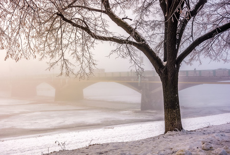 foggy morning near the bridge through the frozen river. tree in hoarfrost on the snowy embankment. gorgeous cityscape sunrise