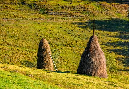 秋の丘の中腹に農村フィールドで干し草の山