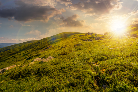 grassy meadow of a hillside on top of mountain ridge. beautiful summer landscape with blue sky and a cloud at sunset Reklamní fotografie
