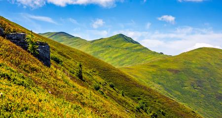 丘の中腹の背後にあるピークの山の尾根。美しい夏の背景 写真素材
