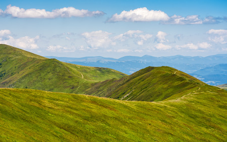 blue sky with some clouds over the green and grassy hills of Carpathian alps. road winds uphill the mountain meadow. beautiful minimalistic summer landscape in good day weather.