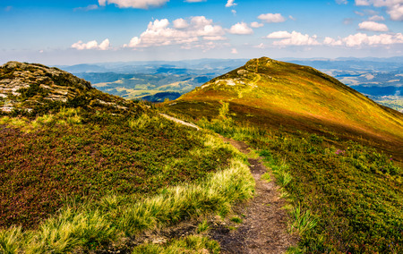 winding footpath through meadows with rocks on the hillside of Carpathian mountain range. Beautiful summer landscape Stock Photo