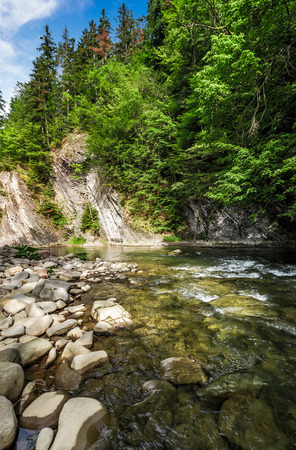 rapid flow of the river in forest. beautiful nature background Stock Photo