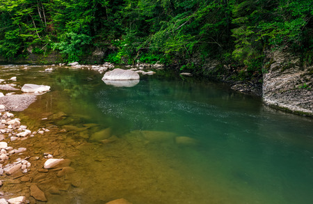 deep green forest river with rocky shore. colorful nature background
