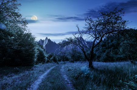 road through the abandoned orchard in mountains. Composite image of High Tatra ridge. beautiful summer landscape at night in full moon light Stock Photo