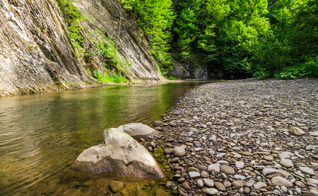 rocky shore of calm forest river. fresh summer nature background