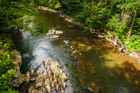 river with rocky shore in the forest. view from above. beautiful nature background with lots of textures