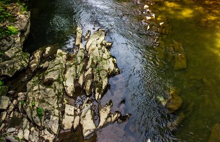 포리스트 강 다채로운 표면입니다. 돌과 물 텍스처와 자연 배경 스톡 콘텐츠