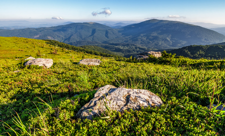 landscape with rocks on grassy alpine hillside of Carpathian mountain ridge. Gorgeous view of Polonina on fine summer weather