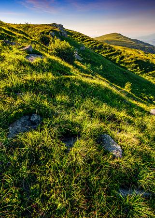 丘の中腹の背後にあるピークの山の尾根。赤みがかった空が夕日の美しい夏の背景