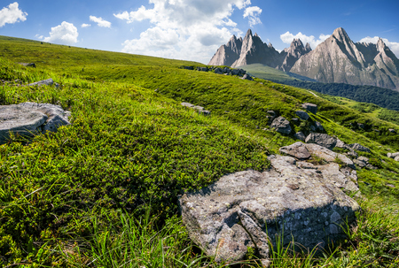High Tatra mountain summer landscape. meadow with huge stones among the grass on top of the hillside near the peak of mountain range
