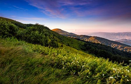 赤みを帯びた美しい日の出の丘の上の芝生の草原。豪華な夏の山の風景 写真素材