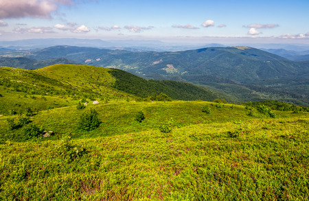 beautiful summer landscape. green grassy meadow on a hillside on top of mountain ridge under blue sky with clouds