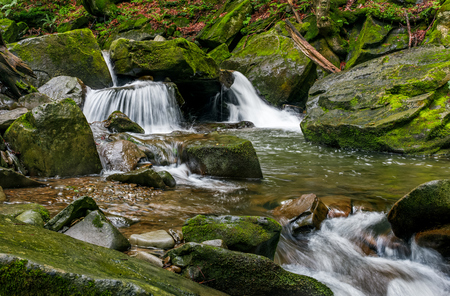 small cascades on the forest river among huge boulders covered with moss. Fresch and clean nature environment. dreamy Carpathian landscape