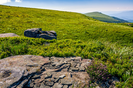 mountain summer landscape. meadow with huge rocks among the grass on top of the hillside near the peak of mountain ridge Stock Photo