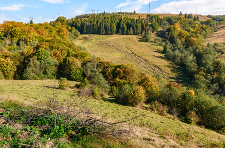 early autumn mountain landscape. green meadow near the forest on the hillside in Carpathians. powerlines on top of a hill