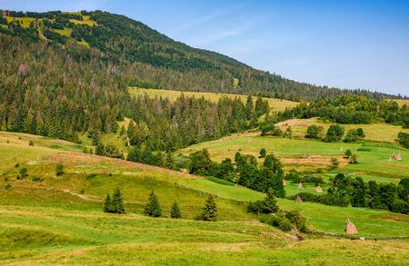 landbouwvelden met hooiberg op heuvels van het platteland in Karpaten. platteland berglandschap.