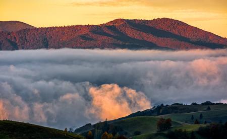 koude ochtendmist met gouden hete zonsopgang in de vallei van Karpatische bergketen. groen gras en bomen met kleurrijke gebladerte op de heuvel weide verlicht door eerste stralen van de zon Stockfoto