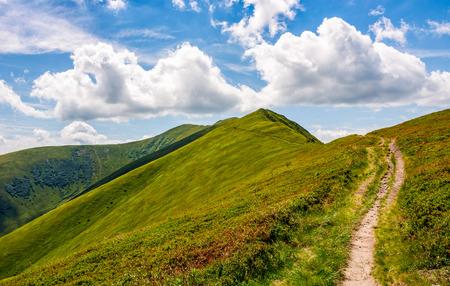여름에 산 풍경입니다. 보도는 산등성이를 통해 오름차순으로 오르막합니다. 여름의 아름다운 자연 경관