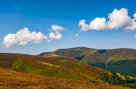 山の尾根の草が茂った丘の中腹。青い空と雲と天気の良い日。素敵な夏の風景 写真素材