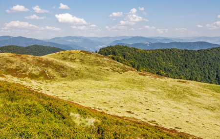 grassy hills of mountain ridge. beautiful nature background