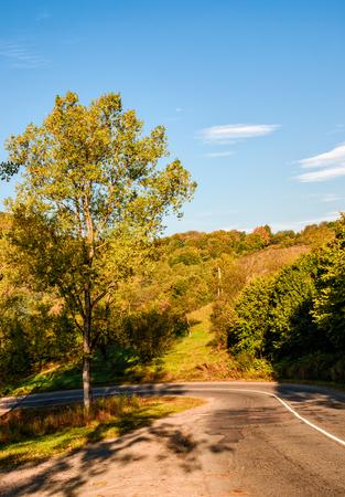 秋の山の中の道路での木。危険な輸送領域 写真素材