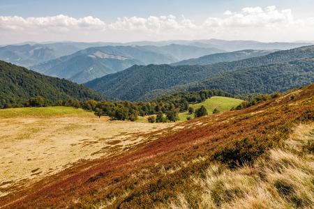赤は、丘の中腹の草が茂ったカーペットを風化しました。秋の初めに山の美しい風景 写真素材