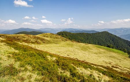 広い山の尾根の草が茂った丘は。美しい秋の自然の背景
