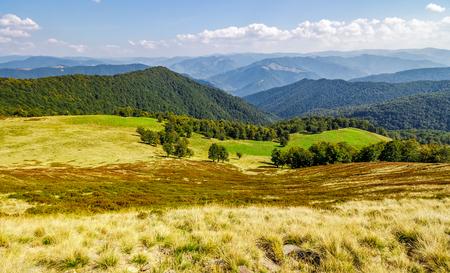 広い山の尾根の丘の上の森。素敵な秋の風景。美しい旅行の背景 写真素材