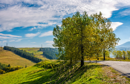 Serpentine through countryside hills with trees. lovely fine weather morning in mountain landscape Stock Photo